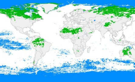 Five countries hold 70% of world's last wildernesses, map reveals